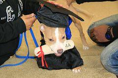 Graduation-10am (140)