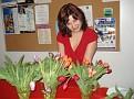 Тюльпаны для дам