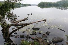 Fishing on Alder Lake