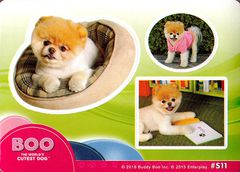 Boo The World's Cutest Dog Sticker #S11 (1)