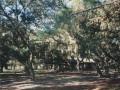 Parks 029.JPG