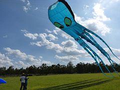 90 foot octopus in Kenya