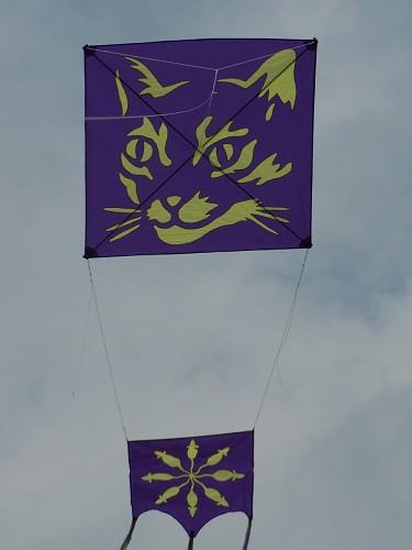 Amazing Maurice kite