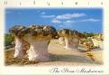 KARDZHALI - The Stone Mushrooms