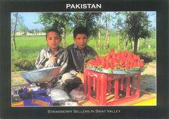 Pakistan - Strawerberry Sellers in Swat Valley NT