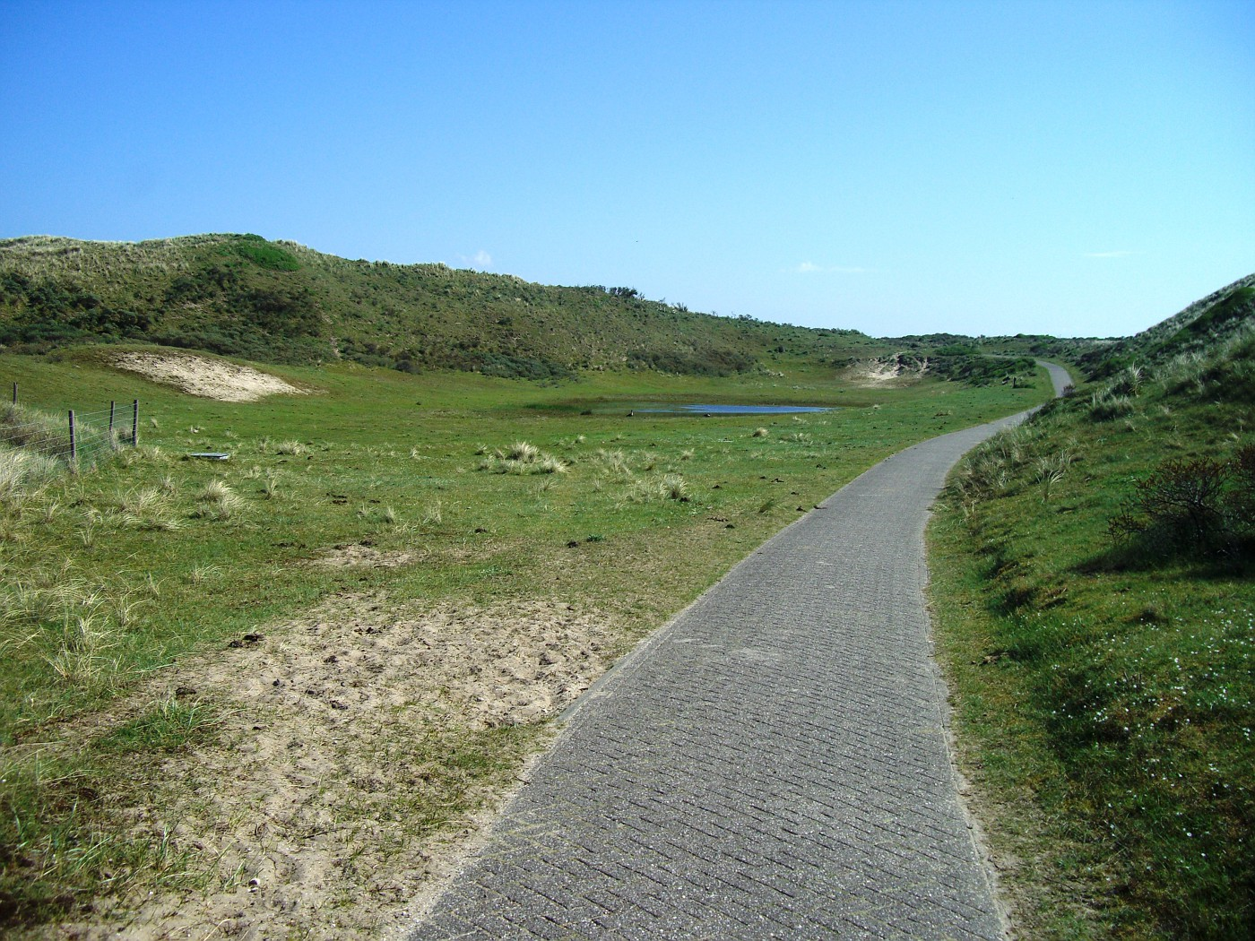 Cycle track in Zuid Holland