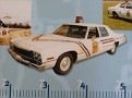 DE - Delaware State Police 1974 Plymouth Bicentennial