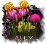 Ally - 3094