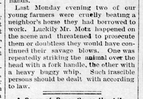 Adam Motz saves horse - Bremen Enquirer - Jul 27 1889