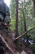 Johnson Falls trail