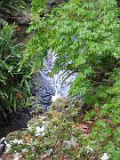 Descano Gardens14