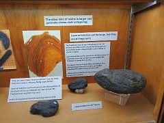 UCLA Meteorite Gallery19