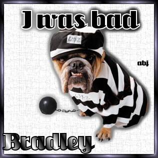 Bradley abj BadDoggie-vi
