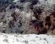 Palo Duro Canyon brush & rock, 1976