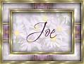 JoeDaisy-vi