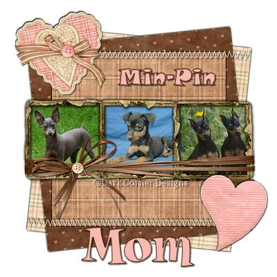 dcd-Mom-Min-Pin