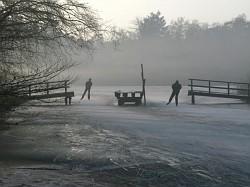 Skaters in the fog