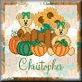 Bears ready for AutumnTagChristopher